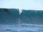ASP Announces BWWT Schedule for 2014/2015 Season
