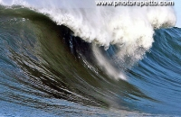 Do you like Surf at Mavericks ?