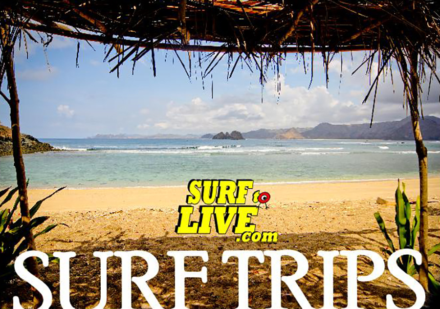 surftolive surftrips